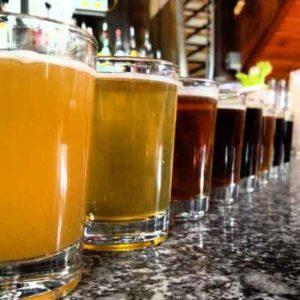 , Technologie výroby piva