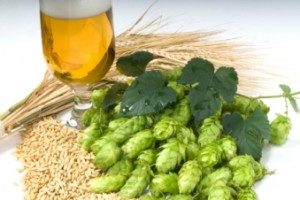 hops extraction, Beer | Hops extraction