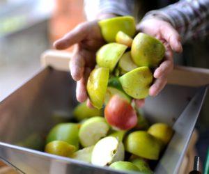 , Fruit verpletterende apparatuur