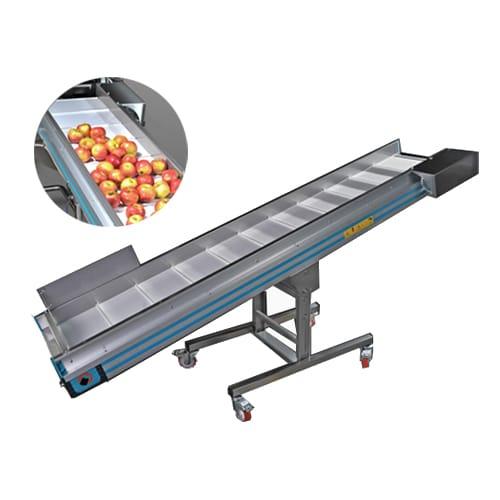 Sorteertransporteurs voor fruit